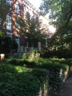 Lush green front gardens