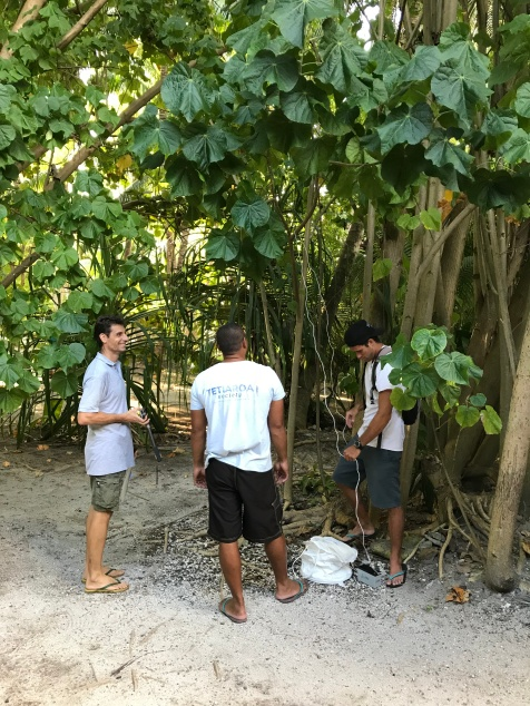 Herve Bossin and members of the Tetiaroa Society setting a BGS trap prior to the MRR experiment